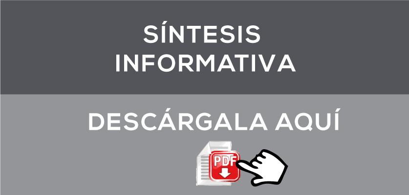 sintesis-informativa